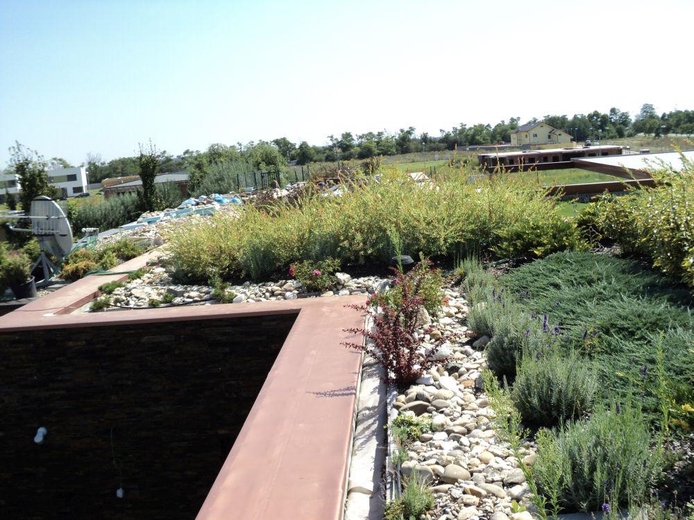 1.2.3 Vegetačné strechy a terasy nabok 1